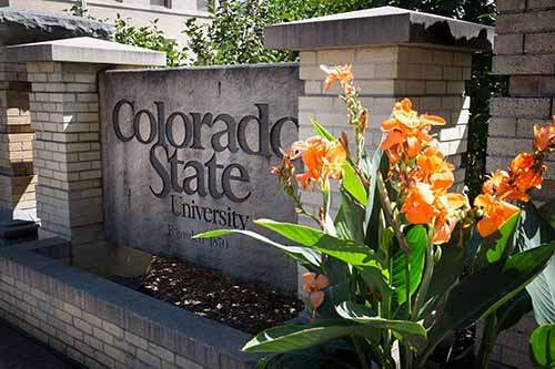 colorado university 10 Highly Recommended Online Universities